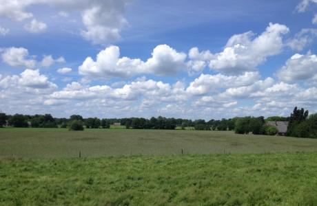 landschap1